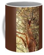 Male Gerenuk Coffee Mug
