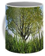 Marine Park Spring Sunshine Coffee Mug