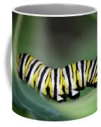 Monarch Caterpillar Macro Coffee Mug