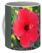 Montecito Perfection Coffee Mug