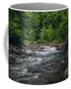 Mountain Stream In Summer #2 Coffee Mug by Tom Claud