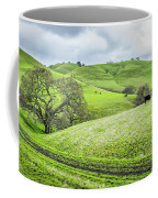 Mt. Diablo Spring Hillside Coffee Mug by Scott McGuire