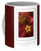 Mussaenda Philippica In Macro Poster Coffee Mug