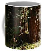 New Growth Redwoods Coffee Mug