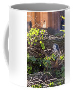 Night Heron At The Palace Revisited Coffee Mug by Kate Brown