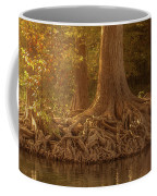 Old Cypress Tree Roots Coffee Mug