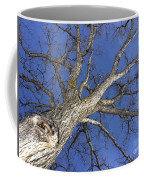 Old Oak Tree Coffee Mug