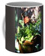 Old Pots New Blooms Coffee Mug