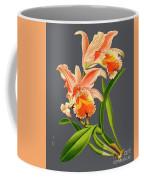 Orchid Old Print Coffee Mug