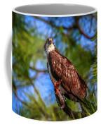 Osprey Lookin' At Ya Coffee Mug by Tom Claud