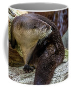 Otter Interrupted Coffee Mug by Kate Brown