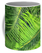 Palms In Light And Shadow Coffee Mug