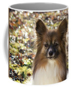 Papillon Sitting In Leaves Coffee Mug