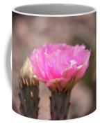 Pink Cactus Bloom Coffee Mug