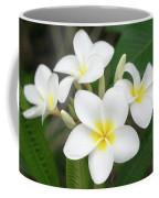 Pleasing Plumeria Coffee Mug by Denise Bird