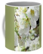 Plum Blossoms 2 Coffee Mug