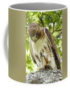 Predator With Prey Coffee Mug