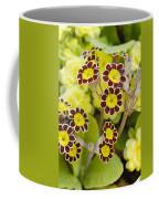 Primula Gold Lace Coffee Mug