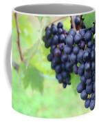 Purple Grape Bunches 21 Coffee Mug