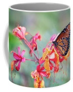 Queen Butterfly On Mexican Bird Of Paradise  Coffee Mug