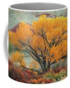Radiant  Coffee Mug by Dustin LeFevre