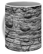 Raindrops On Wood, California, Usa Coffee Mug