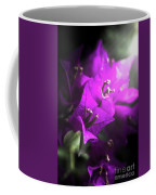 Rays Of Bougainvillea Coffee Mug