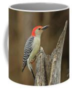 Red-belly At Stump Coffee Mug