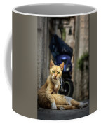Red Cat With Green Eyes Coffee Mug