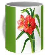 Red-orange Amaryllis Coffee Mug