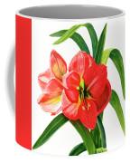 Red Orange Amaryllis Square Design Coffee Mug