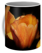 Red Orange Yellow Tulip Coffee Mug