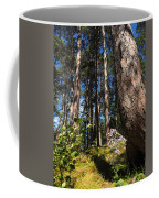 Red Pine Itasca Coffee Mug
