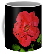 Red Rose With Dewdrops 038 Coffee Mug