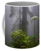 Redwoods By Crescent City 1 Coffee Mug