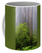 Redwoods By Crescent City 7 Coffee Mug