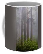 Redwoods By Crescent City 8 Coffee Mug