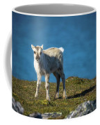 Reindeer Grazing In Spitzbergen Coffee Mug