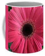 Rhapsody In Pink - Gerbera Daisy Coffee Mug