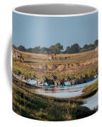River-crossing Zebras Coffee Mug