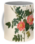 Rosa Rubiginosa Coffee Mug