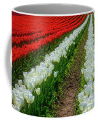 Rows Of White And Red Tulips Coffee Mug