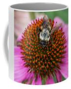 Rudbeckia Coneflower With Bee, Canada Coffee Mug