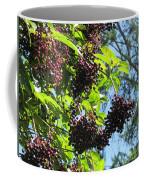Sambucus Elderberry Sureau Coffee Mug