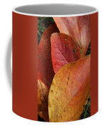 Sassafras Autumn Coffee Mug