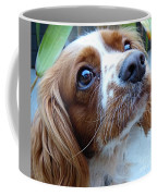 Say Please Coffee Mug