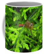 Scarlet Darter Male Dragonfly Coffee Mug