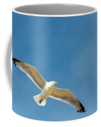 Sea Gull Coffee Mug