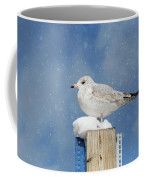 Seagull In The Snow Coffee Mug by Kim Hojnacki