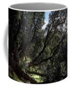 Secular Tree Coffee Mug